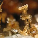 Stilbite with Aegirine Big Rock Quarry, Granite Mountain area, Little Rock, Pulaski County, Arkansas, USA Field of view: 3mm. Photo & Collection: Jean-Marc Johannet (Author: Jordi Fabre)