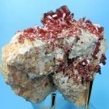 Vanadinite Mibladene, Upper Moulouya lead district, Midelt, Khénifra Province, Meknès-Tafilalet Region, Morocco 111 mm x 92 mm. Major crystal: 11 mm wide, 3 mm thick (Author: Carles Millan)