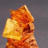 Wulfenita Rowley Mine, Arizona, USA 5x2 cm. Cristal mayor 1cm. arista. (Autor: E. Llorens)