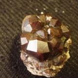 Very nice 6 cm Andradite garnet personally collected from Orogrande, New Mexico, USA - now on the White Sands Missile Range Museum collection. (Author: Darren)
