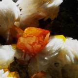 Wulfenita.  Mibladen, Moulouya lead district, Midelt, Khénifra Prov., Meknês-Tafilalet Reg., Marruecos.  6,4 x 4,5 cm., cristal 0,5 cm. (Autor: Juan L)