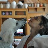 Merle and our dog, Albite. He LOVES her! (Author: Gail)