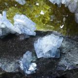 Barita Azul + Fluorita Mina Moscona - Solís - Corvera - Asturias Pieza de 15x15 cm. cristal mayor 1,5 cm. Detalle de la pieza anterior (Autor: El Coleccionista)