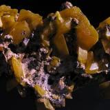 Wulfenita. Touissit, Oujda, Marruecos. 5,5x4x2,2 cm. Cristales hasta 1,5 cm. Col. y foto Nacho Gaspar. (Autor: Nacho)