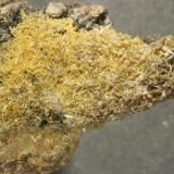 "Vanadinita Mina ""San Manuel"", Berlanga, Badajoz, Extremadura, España Zona mineralizada: 3x1,5 cm (Autor: Inma)"