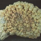 Pirita recubriendo Amonites Playas de Lyme Regis - Dorset - United Kingdom 76 x 60 x 20 mm (Autor: Joan Martinez Bruguera)
