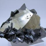 Tetrahedrite, pyrite, quartz Mundo Nuevo Mine, Huamachuco, Sanchez Carrion Province, La Libertad Department, Peru 65 mm x 51 mm. Longest tetrahedron edge: 12 mm.  Longest pyrite crystal edge: 25 mm (Author: Carles Millan)