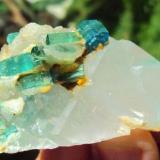Tourmaline Brazil (old mine) 4 x 6.5 x 3.5 cm. blue tourmaline (Author: barbie90)