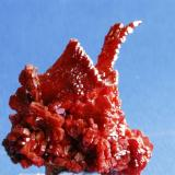 Vanadinite Mibladen, Morocco 5x6 cm (Author: Enrique Llorens)