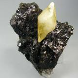 Calcita en Esfalerita. Elmwood Mine, Smith Co, Tennessee, Usa. 8x6´5 cm (Autor: geoalfon)