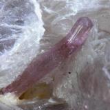 """Elbaita (Rubelita) sobre Moscovita, de algún lugar de Brasil. Campo visual 11 mm. Nótese como el cristal se """"desvía"""" durante su crecimiento al """"chocar"""" contra la Moscovita. (Autor: Vinoterapia)"""