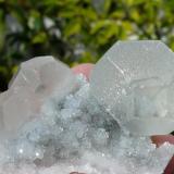 Fluorita. Xianghualin, Hunan, China. 6x4 cm (Autor: nerofis2)
