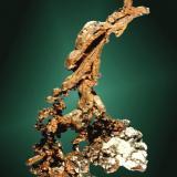 Cobre Globe, Gila Co., Arizona, EUA. Apache (m). Agregado arborescente de cristales elongados en matriz. 6,9 x 4,0 x 1,2 cm. (Autor: Carles Curto)