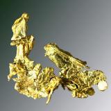 Oro Foresthill, Placer Co., Michigan Bluff, California, EUA. Eagle's Nest (Mistery Wind) (m). Agregado de cristales octaédricos aplanados muy definidos. (ejemplar de 1991). 2,1 x 1,9 x 0,5 cm. (Autor: Carles Curto)