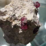 Y por ultimo unos berilos rojos en riolita de los Wah Wah Mts de Utah en USA, el biterminado mide 1,2 cm (Autor: Pep Gorgas)