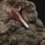 Proustita sobre Safflorita (Arseniuro de cobalto) cristal de 1 cm, de Schneeberg, Sajonia, Alemania. (Autor: Pep Gorgas)