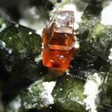 """Grosularia verde y ¿grosularia? anaranjada Mina """"El Mico"""", nº 7333, Paraje """"Cuesta de Carboneros"""", Córdoba capital, Andalucía, España Cristal anaranjado de 1,5 mm. aprox. (Autor: Inma)"""