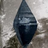 Anatasa en Cuarzo ahumado  Dyrfonni, Viveli, Eidfjord, Hardangervidda, Hordaland, Noruega Encontrada en 1994 Tamaño de la pieza: 5.8 × 2.9 × 2.2 cm. El cristal de Anatasa mide: 1.4 × 0.6 cm. Foto: Minerales de Referencia (Autor: Jordi Fabre)