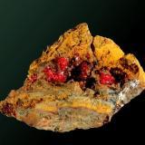 Cuprita (calcotriquita) Warren (Bisbee), Cochise Co., Arizona, EUA. Cooper Queen (m). 3,9 x 3,1 x 2,2 cm. / agregado pral.= 1,1 x 0,4 x 0,2 cm. Pequeños agregados afieltrados en matriz de limonita. Ejemplar obtenido en 1982. (Autor: Carles Curto)