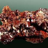 Cuprita Tsumeb, Otavi (mts.), Tsumeb (constituéncia), Oshikoto (prov.), Namibia. 4,0 x 3,5 x 1,8 cm. / cristall pral.= 0,4 x 0,4 x 0,3 cm. Cristales octaédricos modificados por el cubo, matriz. Ejemplar obtenido en 1980 (Autor: Carles Curto)