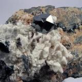 Hematites sobre calcita N'chwaning II, Kuruman, Northern Cape, Sudáfrica Pieza de 6,8 cm x 4,3 cm, cristal mayor 1 cm x 1,2 cm Pieza adquirda en Mayo de 2008 (Autor: Francisco Javier Ortiz)