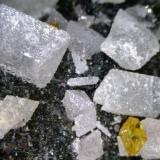 Anglesita Payunia, Mendoza, Argentina ~1cm Cristales biterminados de anglesita (acompañados por un solo microcristal de wulfenita). (Autor: Alfredo Petrov)