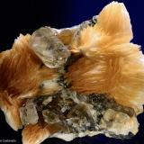 Cerusita y barita.  ACF Mine area. Mibladen. Midelt. Marruecos.  5x4.1 cm. Cristal mayor 1.3 cm (Autor: Juan Luis Castanedo)
