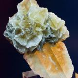 Yeso Cerro de San Roque, Villalbilla, Madrid. España 7,5 cm X 4,5 cm Dos pequeñas rosas sobre un cristal de yeso color caramelo (Autor: MMorales)