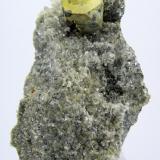 Kësterita, mushistonita, mica Mt Xuebaoding, Pingwu, Mianyang, Sichuan, China 60 mm x 45 mm (Autor: Carles Millan)