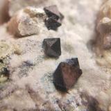 Magnetita Mina la Gallega, Ojén, Málaga, España Cristales 5mm (Autor: Nieves)