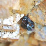 Calcopirita sobre ankerita Minas del Horcajo, El Horcajo, Almodóvar del Campo, Ciudad Real, Castilla-La Mancha, España 5 mm (Autor: Nieves)