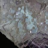 Fluorita Melchor Múzquiz, Municipio de Melchor Múzquiz, Coahuila, México  Otro detalle de la pieza anterior (Autor: javier ruiz martin)
