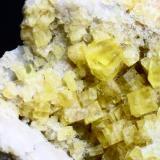 Fluorita Mina La Florina, Hornachuelos, Córdoba, España Pieza de 8,5 x 6 cms. Cristales de 0,8 cms. (Autor: Laureano)