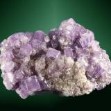 Fluorapatito Pech (Darra-i-Pech), Langhman, Nuristán, Afganistán. 6,0x4,0x2,3 cm. / 0,7x0,7x0,6 cm. (cristal pral.) Agregado (drusa) de cristales prismáticos cortos de color lila.  Ejemplar del año 2004. (Autor: Carles Curto)