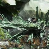 Ferropargasita, Epidota, Magnetita, Hematites.<br />Corta Manuel, Minas de Cala, Cala, Comarca Sierra de Huelva, Huelva, Andalucía, España<br />Haces de 10 a 15 mm.<br /> (Autor: Laureano)