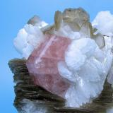 Fluorapatite, albite, quartz, mica Shigar Valley, Skardu District, Baltistan, Gilgit-Baltistan, Pakistan 65 mm x 47 mm  Close up view (Author: Carles Millan)