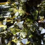 Epidota.  Chihuahua. Méjico.  13x11 cm. Cristal mayor 1.7 cm. (Autor: Juan Luis Castanedo)