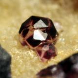 Fluorita Arteixo, A Coruña Grupo de cristales de 3 mm (Autor: usoz)