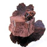 Copper San Agustín Mine, Corocoro, Pacajes Province, La Paz Department, Bolivia 38 mm x 35 mm (Author: Carles Millan)