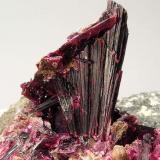 Eritrina Cantera Agoudal Centre, Bou Azzer, Tazenakht, Ouarzazate, Marruecos Encontrada en Abril-Mayo de 2010 Tamaño de la pieza: 7.7 × 5.8 × 6.6 cm. El cristal más grande mide: 2.2 × 0.4 cm. Foto: Minerales de Referencia (Autor: Jordi Fabre)
