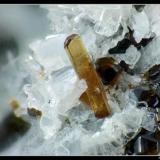 Vesuvianite Felskinn, Saas Fee, Switzerland FOV 3  mm (Author: ploum)