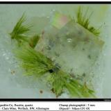 Agardite-(Ce) with fluorite and quartz Clara Mine, Wolfach, BW, Germany fov 3 mm (Author: ploum)