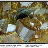 Vesuvianite with Clinochlore, garnet and diopside Felskinn, Saas Fee, VS, Switzerland fov 3,5 mm (Author: ploum)