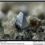 Anatase, rutile Chiavenna, Sondrio, Lombardy, Italy fov 2 mm (Author: ploum)