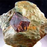 Almandino Khogyani, Provincia de Nangarhar, Afganistán Como es fácil de apreciar, el cristal está formado por rombododecaedros  d {110} (Autor: Antonio Alcaide)