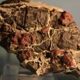 Cinabrio<br />Mina Carmina, Güicivacas (Boicivacas), Maraña, Comarca Montaña Oriental, León, Castilla y León, España<br />14 x 8,5 cm.<br /> (Autor: minero1968)