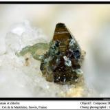 Anatase and chlorite Col de la Madeleine, Savoie, France fov 1 mm (Author: ploum)