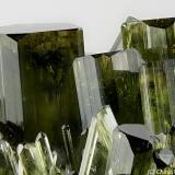 Vesuvianite Bellecombe, Châtillon, Aosta Valley, Italy 19.94 mm 19.94 mm area with several green-dark Vesuvianite crystals (Author: Matteo_Chinellato)