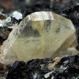 Titanite Mt. Argentea, Arenzano, Genova Province, Liguria, Italy 14.61 mm yellow pale Titanite crystal (Author: Matteo_Chinellato)