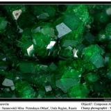 Uvarovite garnet Saranovskii mine, Urals region, Russia fov 3.5 mm (Author: ploum)